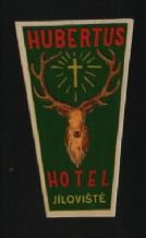 Collectable Hotel label luggage labels Czechoslovakia scarce #176